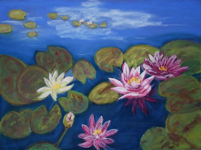 Water-Lilies_640